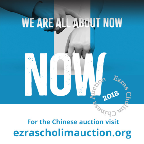ezrascholimauction.org
